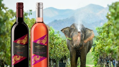 Celebrating Exceptional 2021 Harvest for Monsoon Valley Vineyard in Thailand